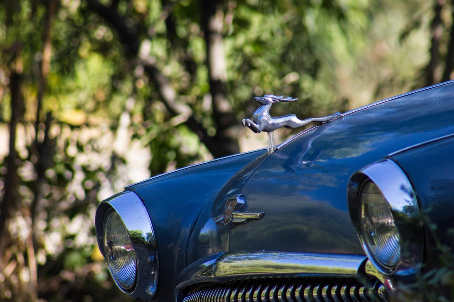 Как подарить автомобиль фонду